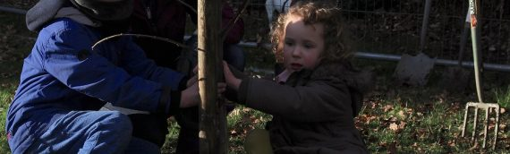 York Jews Plant an Orchard!